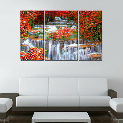 Unframed HD Canvas Print Home Decor Wall Art Picture Poster Mangrove Waterfall