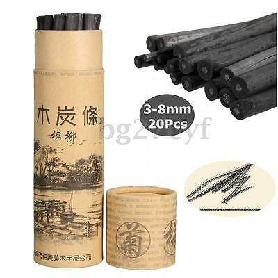 20pcs Charcoal Dark Pencil Sketch Drawing Sketching Oil Painting Willow Artist