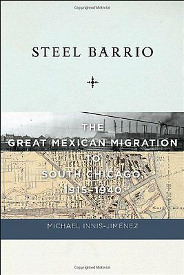 Steel Barrio: The Great Mexican Migration to South Chicago, 1915-1940 (Culture,