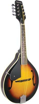 Ashbury AM-10 LEFT HANDED bluegrass MANDOLIN, F-holes Spruce top. From Hobgoblin