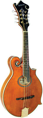Ashbury AM-370 BLUEGRASS MANDOLIN, F4style, Scroll, Solid Spruce top, Maple body