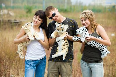 One baby groveling brown/white tiger/leopard/lion plush toy stuffed animal