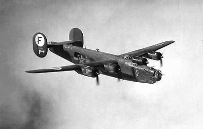 United States Air Force USAAF Consolidated B-24 Liberator Military Photo 1