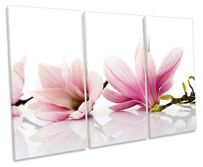 Floral Flowers Magnolia TREBLE CANVAS WALL ART Box Framed Print