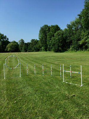 Dog Agility Equipment Starter Set for beginners!