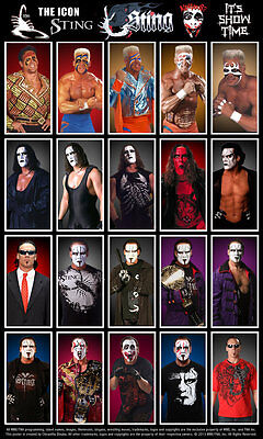 Sting - WCW WWE Wrestling picture 8x11 photo 004