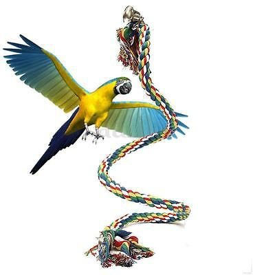 Parrot Rope Budgie Bell Coil Swing Bird Cage Conures Cockatiel Perch Chew Toy 1M