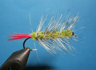 Wooly Worm olive - 12 flies - # 8, 10, 12