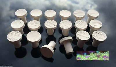 Marine Aquarium Coral Propagation Frag Plugs Ceramic Reef Safe SPS LPS Zoa