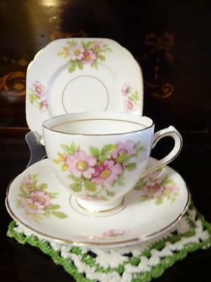 1950s DUCHESS BONE CHINA WILD ROSE BLOSSOM CUP SAUCER PLATE TRIO