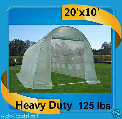 Green Garden House Walk In Greenhouse 20'x10' - Heavy Duty