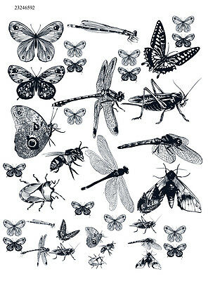 Ceramic  Decal Waterslide Decals Insects 23246592 -