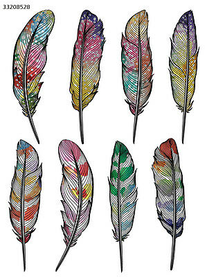 Ceramic Decal Waterslide Decals Colorful Feathers 33208528
