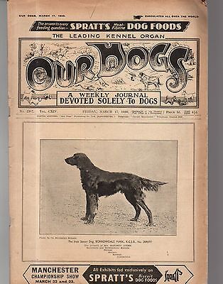 1939 Our Dogs March 17 - Irish Setter - Borrowdale Mark