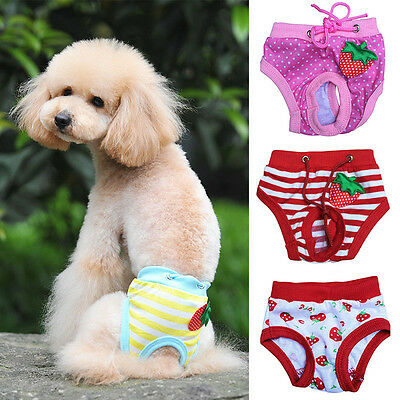 Cat Dog Puppy Diaper Sanitary Pants Female Ruche Cotton Clothes For Pet Dog