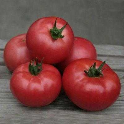 Tomato Vegetable seeds Mikado Pink from Ukraine Large