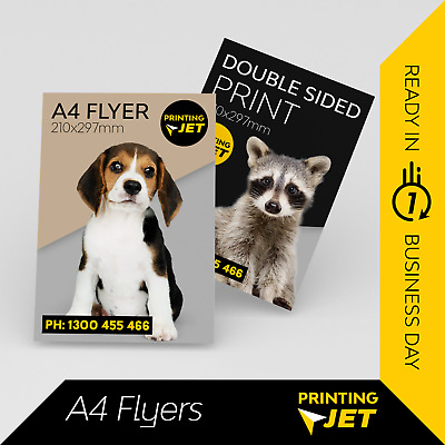 A4 Flyers / A4 Posters : Single or Double Sided (Qty: 250 / 500 / 1000 pcs)