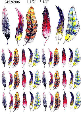 Ceramic Waterslide Decals Color Feather 2452690FOOD SAFE LEAD FREE