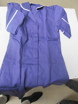 AIRT Ladies Tunic, Purp/Wh Size 8
