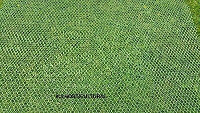 10 SQUARE METRES GRASS TURF PROTECTION MESH / TURF REINFORCEMENT MESH 460g/m2