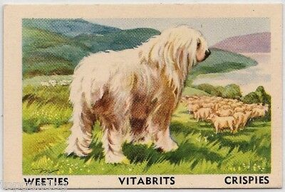 Old English Sheepdog Australian Cereal Card 1958