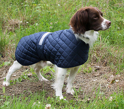 Cosipet Safety Anorak Lightweight Quilted Dog Coat