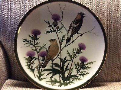"""Franklin Mint - Song Birds Of The World - """"bobolink""""  Plate"""