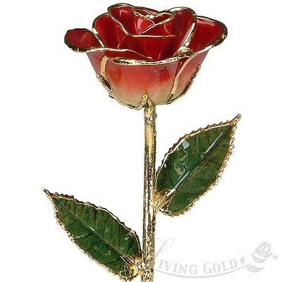 New Lacquered Real Rose Red Valentine's Day Permanent Flower Gift 24K Gold Trim