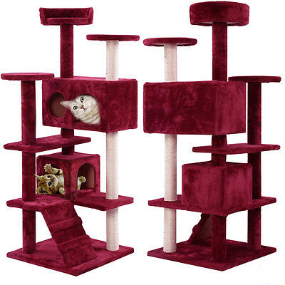FDS Cat Kitten Scratching Post Tree Scratcher Bed Rest Play Cando Lovely Wine