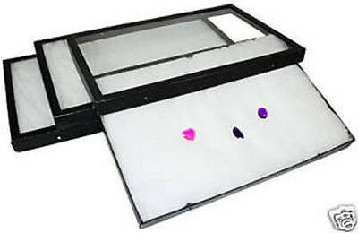 """3 Large Riker Mount Collectable Display Cases Matting 12"""" X 8"""" X 3/4"""""""