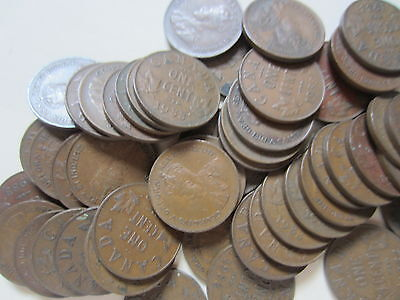 Roll of 1933 Canada Small Cents (50 Coins).
