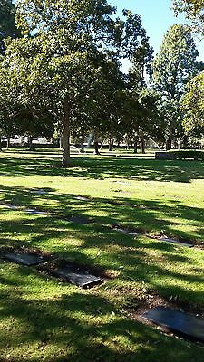 Cemetery Plot at Westminster Memorial Park