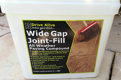 Pave Fix Patio Paving Slabs Jointing bush inChemical Mortar Compound Grey 12Kg