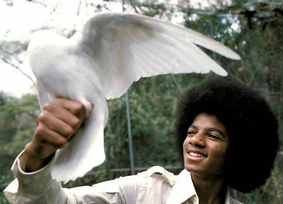 Michael Jackson Unsigned Photo - 8088 - With Dove