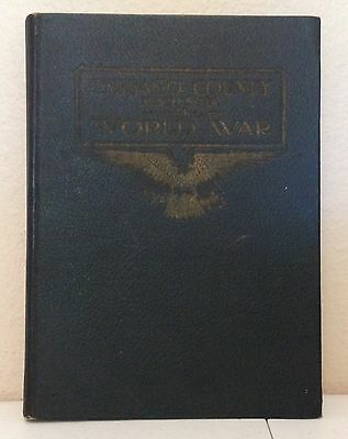 In The World War Chisago County Minnesota WW1 1920 Genealogy Honor Roll Book