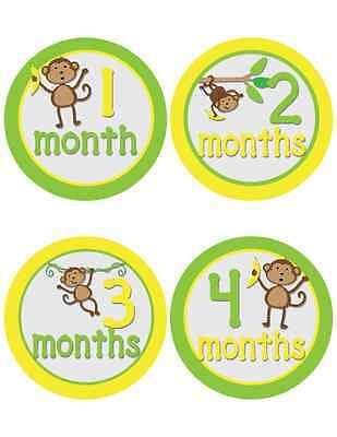 Monkey Themed Baby Milestone Stickers for Boys (535)