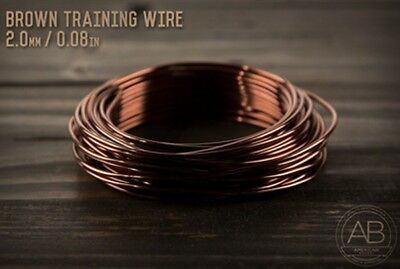 American Bonsai Brown Aluminum Training Wire - 2.0mm - 100 grams - 40ft - 100g