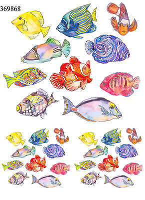 Ceramic Waterslide Decals Cooler Fish 369868 FOOD SAFE LEAD FREE