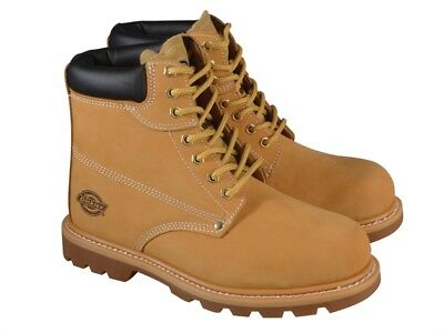 Dickies DICCLEVE8H Cleveland Honey Super Safety Boots UK 8 Euro 42