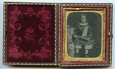 Long Hair Boy with Dog and  Toy Sailing Ship, Vintage Antique  Ambrotype Photo