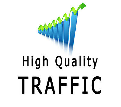 UNLIMITED genuine real Website TRAFFIC for Two months
