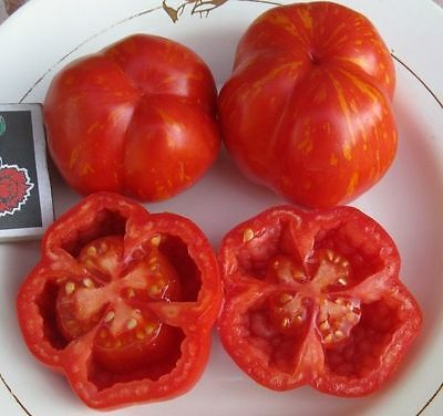Tomato Seeds *Gogoshar. Hollow* Ukraine Heirloom Vegetable Seeds
