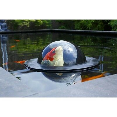 Floating Fish Dome Velda