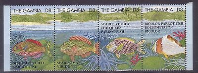 Gambia 1995 Multicolor Fishes Mnh M8942