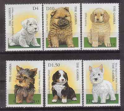 Gambia 2000 Puppies Mnh M8941