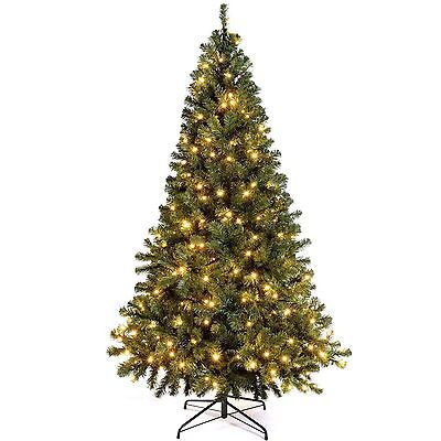 New Canadian Green Spruce Pre-Lit Christmas Tree  Warm White LED Lights  6FT&7FT