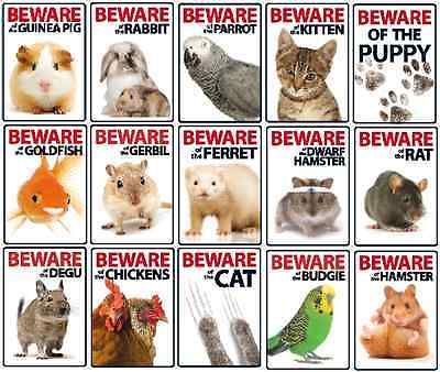 Beware of the Small Animal Plastic Signs