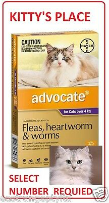 Advocate Flea and Worm Treatment For Large Cats Over 4kg