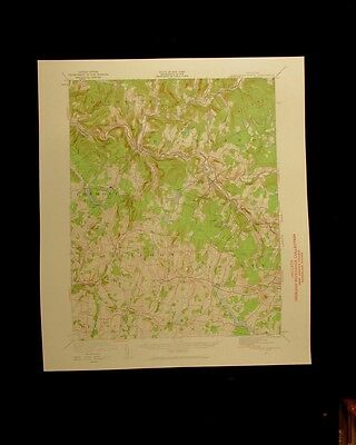 Livingston Manor New York 1960 vintage USGS Topographical chart map