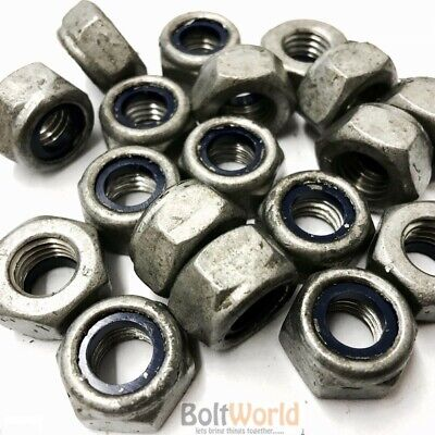 Galvanised Nyloc Insert Nuts Type T Standard Pitch Nylock Lock Nut Din 985 Bw